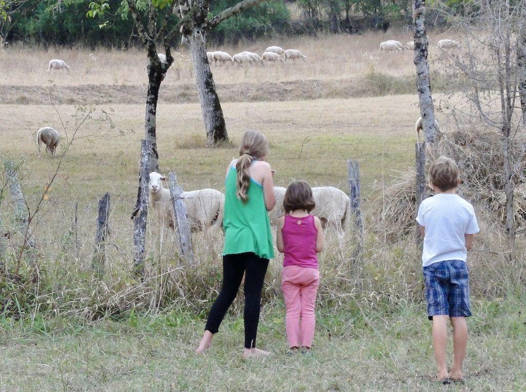 Dordogne Kids