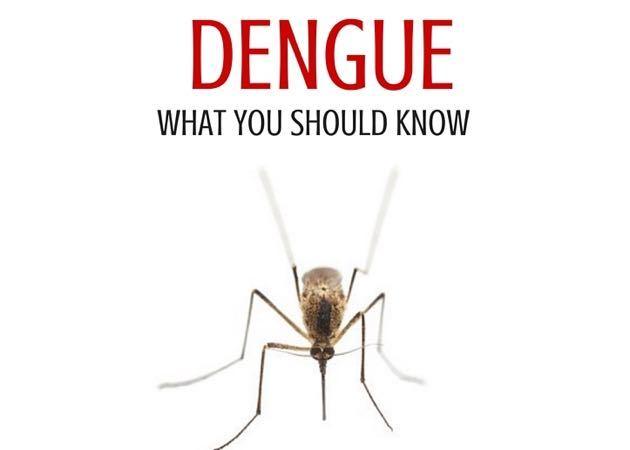 Dengue Hawaii