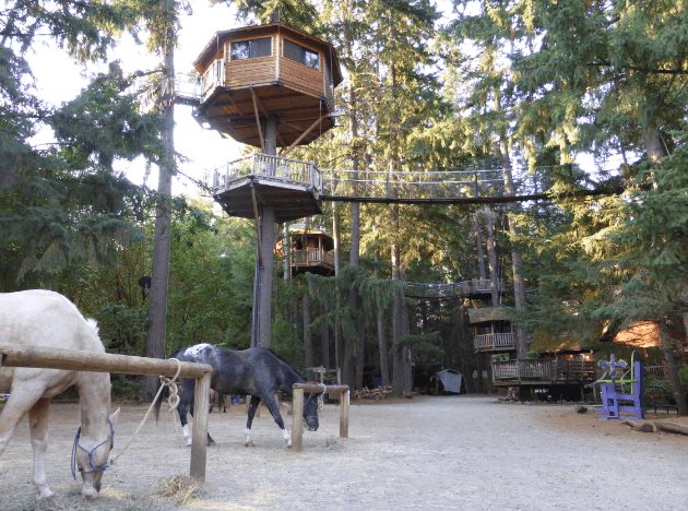The Magistree Treehouse