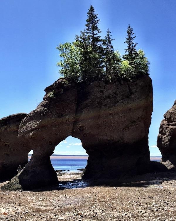 Hopewell Rocks, New Brunswick – with Kids