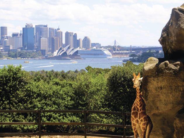 Sydney Australia with Kids