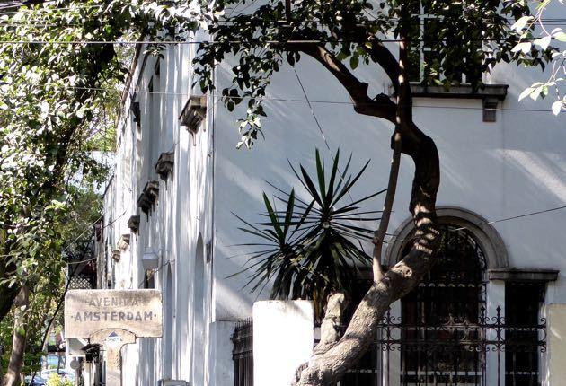 Avenida Amsterdam - Condesa