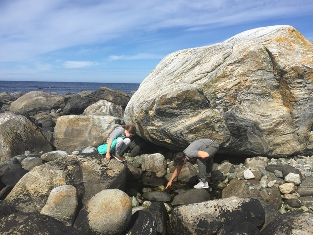 Beach at Alnes Lighthouse Norway