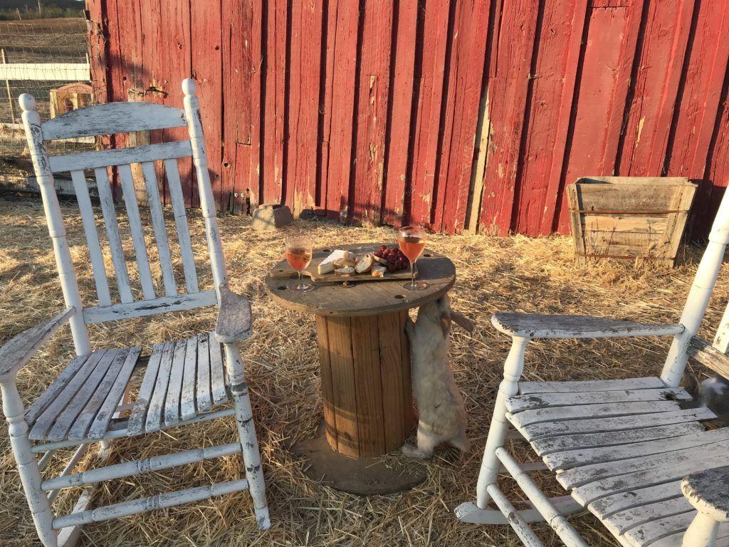 Farm Stay California