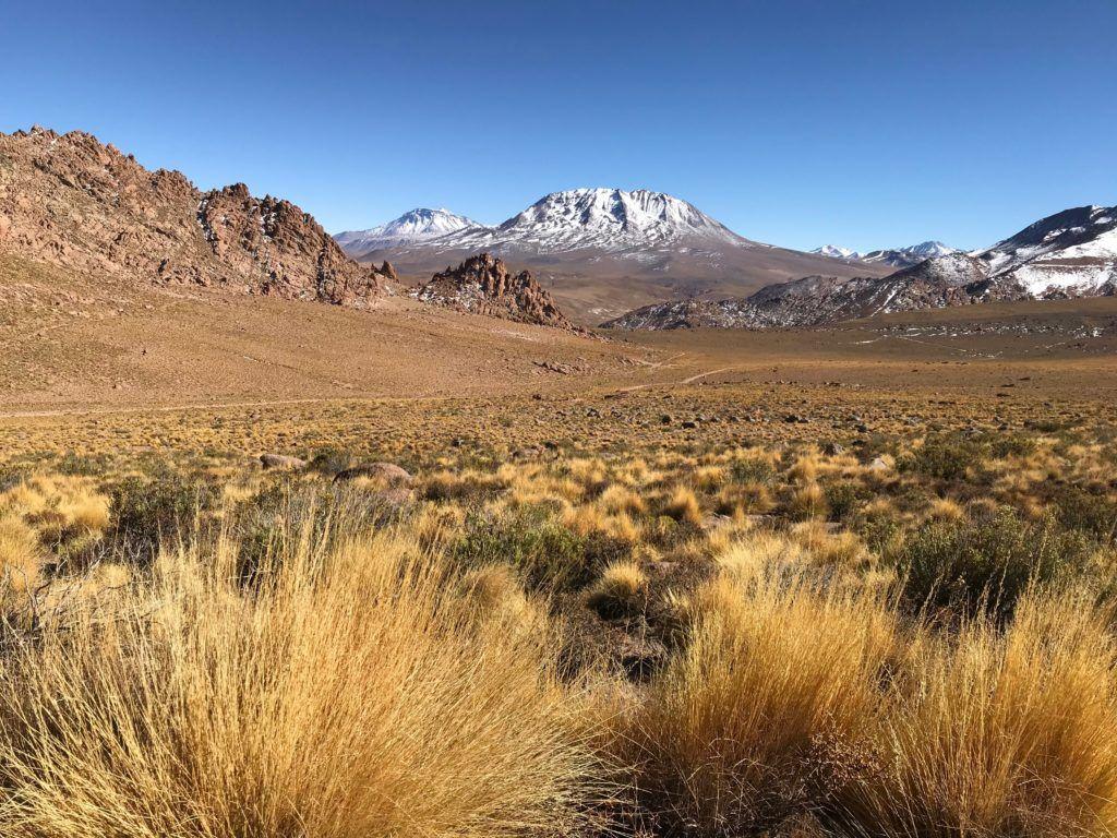 Awasi Atacama Highlands