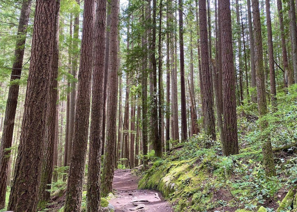 Cypress Falls – Easy Hikes in Vancouver