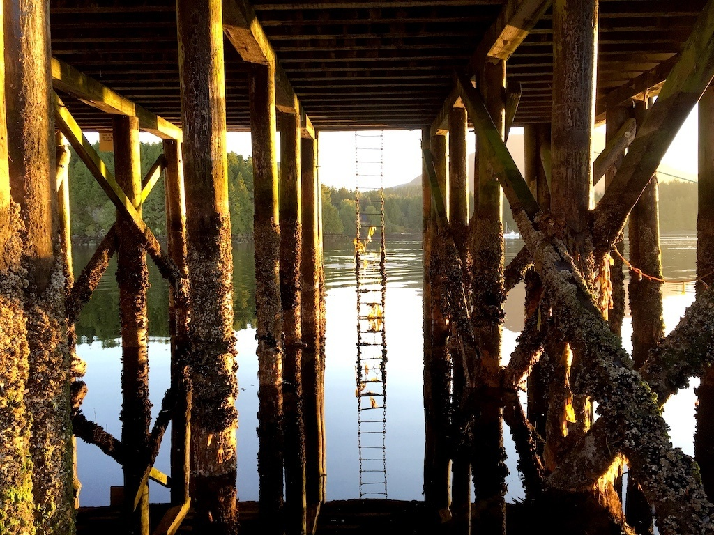 Where to Stay in Ucluelet