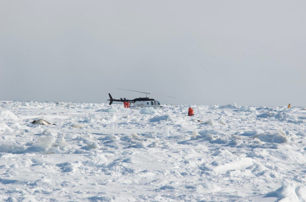 Helicopter on Ice Pack St. Lawrence