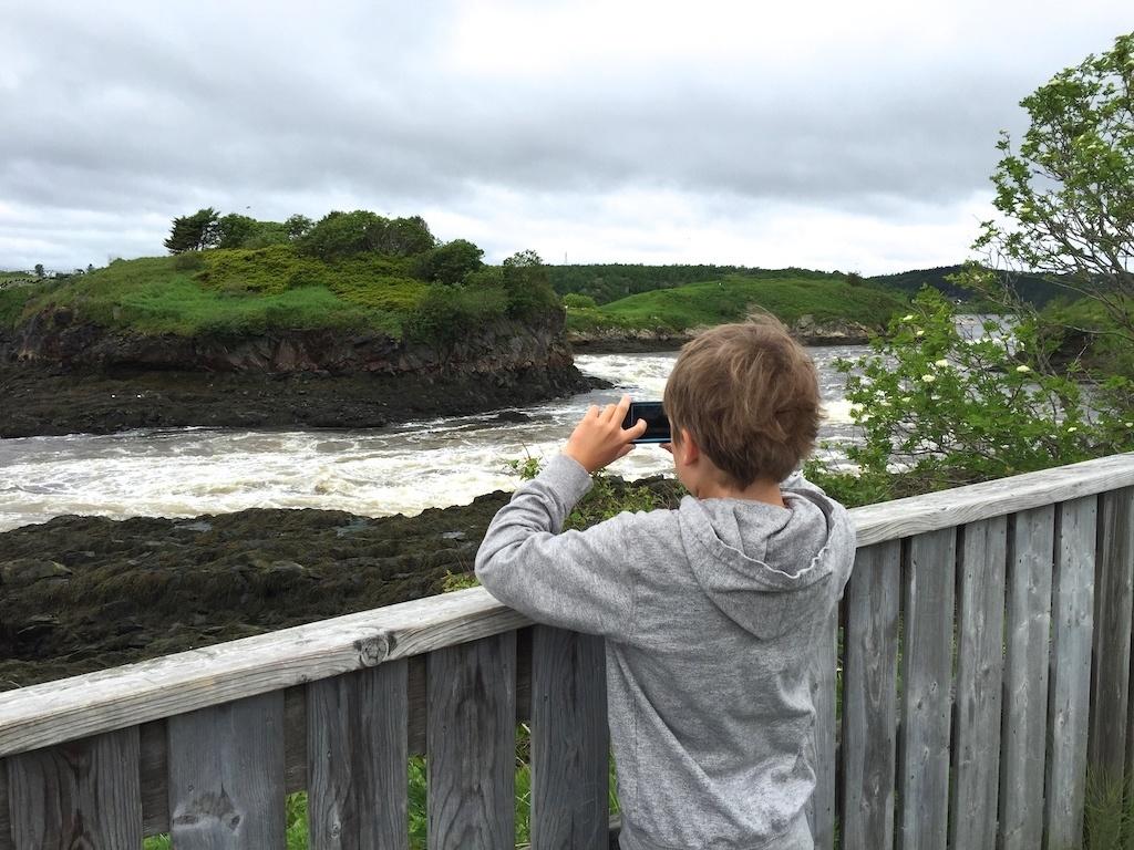 Reversing Rapids Saint John