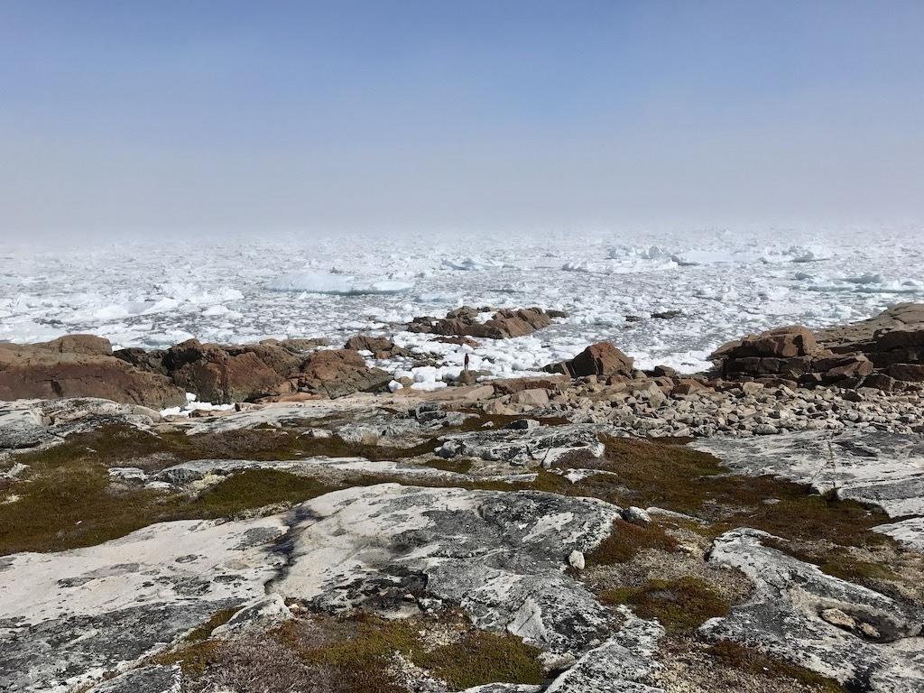 Iceberg Season Newfoundland