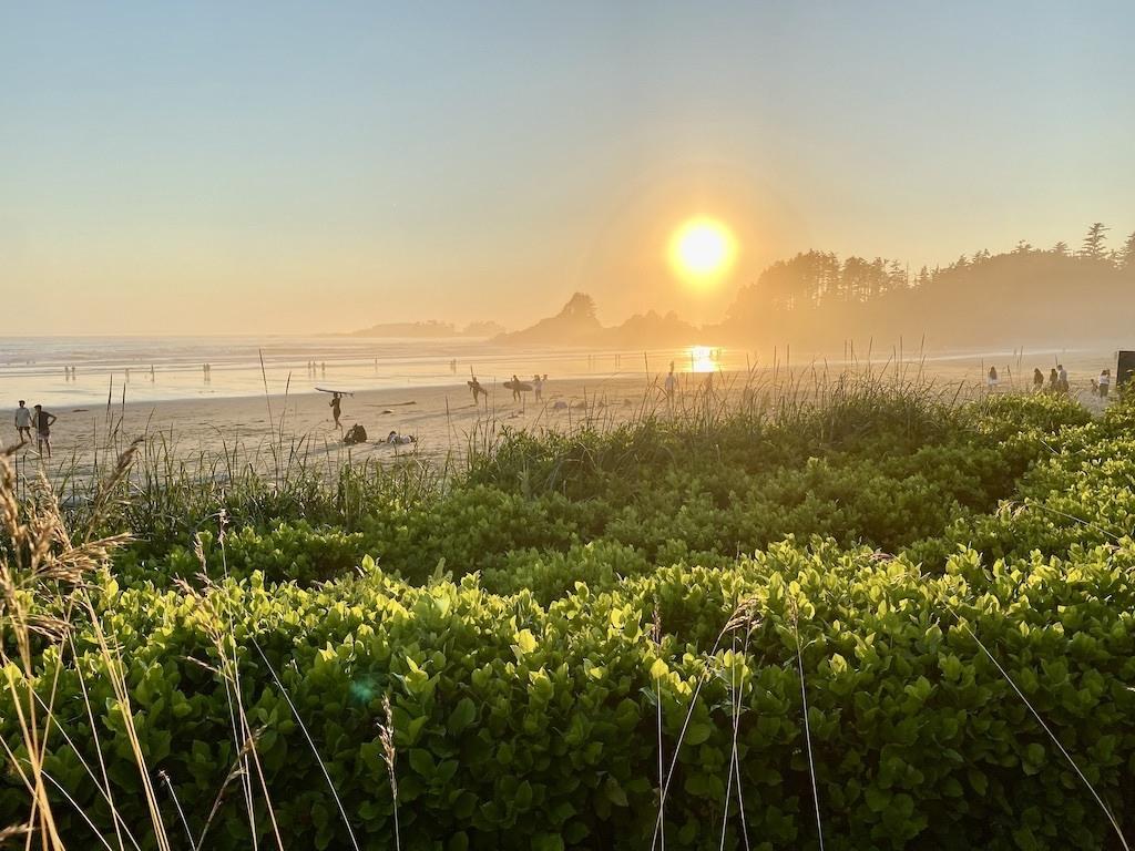 Best Tofino Beaches